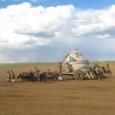モンゴル建国800周年記念イベント5